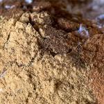 Μείγμα μπαχαρικών για λεμπκούχεν (Lebkuchen)