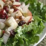 Γιορτινή σαλάτα με μήλο και κρανμπέρις